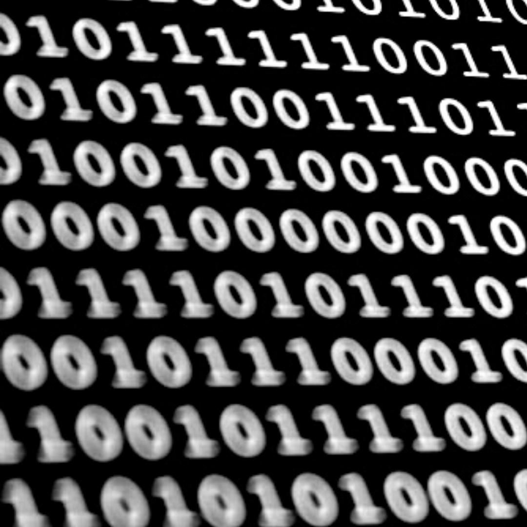 Social Data & Search Data